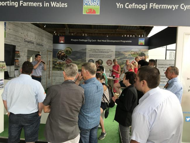 Dr Joe Angell, Wern Vets, discussing flock health on the HCC stand at the Royal Welsh Show in July