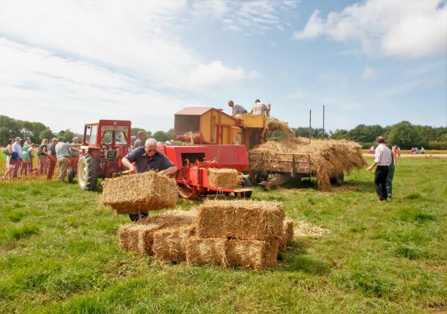 Hundreds of people enjoyed the 32nd Camrose Vintage Working Day. PICTURE: CVWD