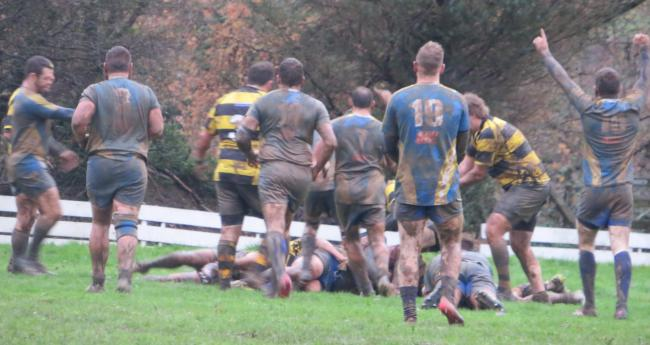 Aberaeron celebrate as scrum half Gareth James scorers. PICTURE: Western Telegraph.
