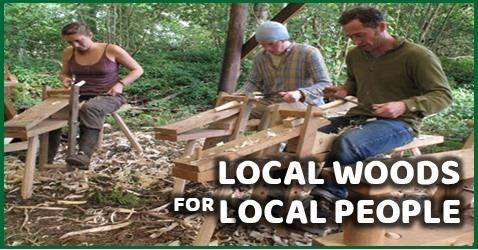 The woods visits give the opportunity to a chance to learn, discover and have your say about local woods