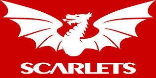 Scarlets were beaten by Cardiff on Saturday