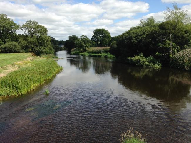 Concerns have been raised over high levels of phosphate in parts of the River Teifi