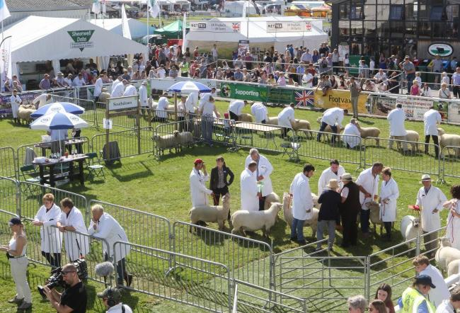 This year's Royal Welsh Show has been called off because of the coronavirus pandemic