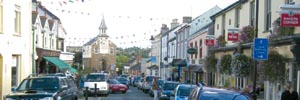 Western Telegraph: narberth