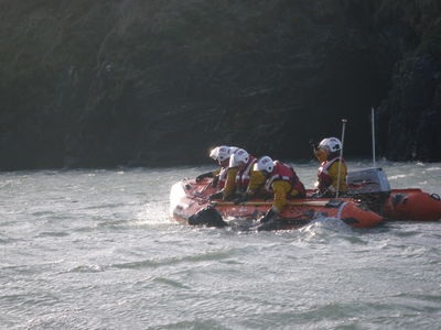 The cold tired horse was swum to safety by Cardigan lifeboat