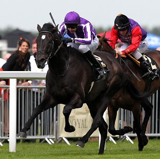 So You Think (left), ridden by Joseph O'Brien, beats Carlton House in the Prince Of Wales's Stakes at Royal Ascot