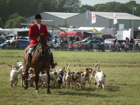 Wales' largest three-day county agricultural show drew crowds to Withybush Showground, near Haverfordwest, from August 16-18. The Pembrokeshire County Show is an annual celebration of agriculture, livestock and all things countryside with a host of attrac