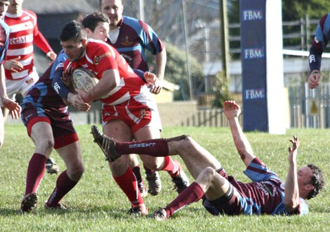 Ben Johnson goes on the charge for Milford Haven. Picture: Sheila Sear.