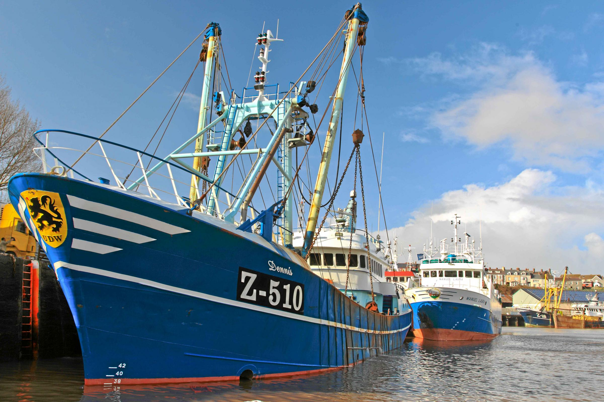 Fish dock boost: Belgian trawler Dennis Z-510 and Anglo-Spanish vessel Manuel Laura at Milford Fish Docks.