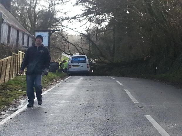 The Pembroke Road is currently blocked by a tree just outside Freystrop