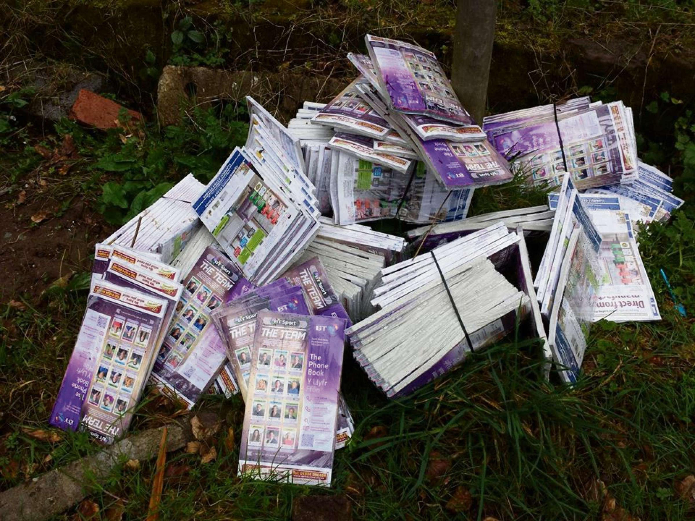 IT'S GOOD TO TALK: Around 150 phonebooks were dumped on the side of the road. PICTURE: Hidden Pembrokeshire. (5006462)
