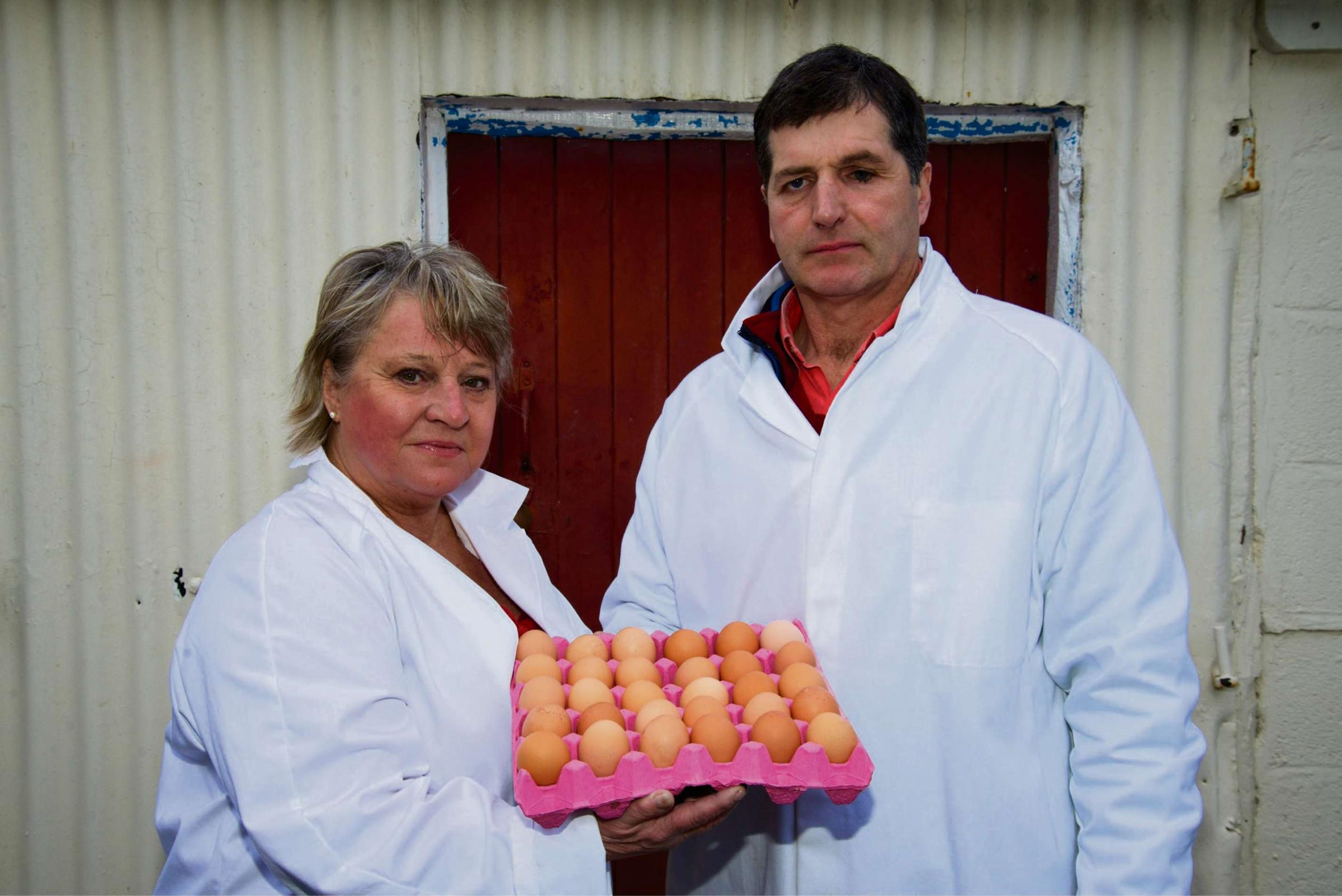 Egg packing company fined over food hygiene offences