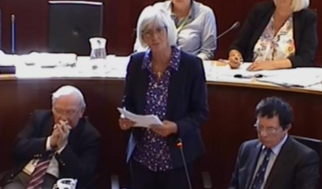 Cllr Lyn Jenkins speaking in the council chamber.
