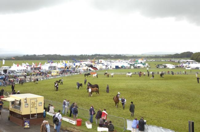 Pembrokeshire County Show 2008
