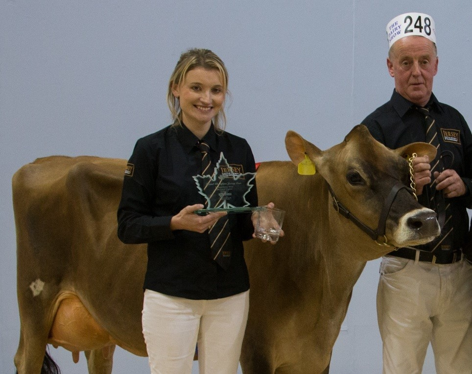 Bred by the Llewellin family of Clarbeston - the winner of the UK Jersey cattle championship and reserve overall at the South and West Dairy Show PICTURE: Meyrick Brown