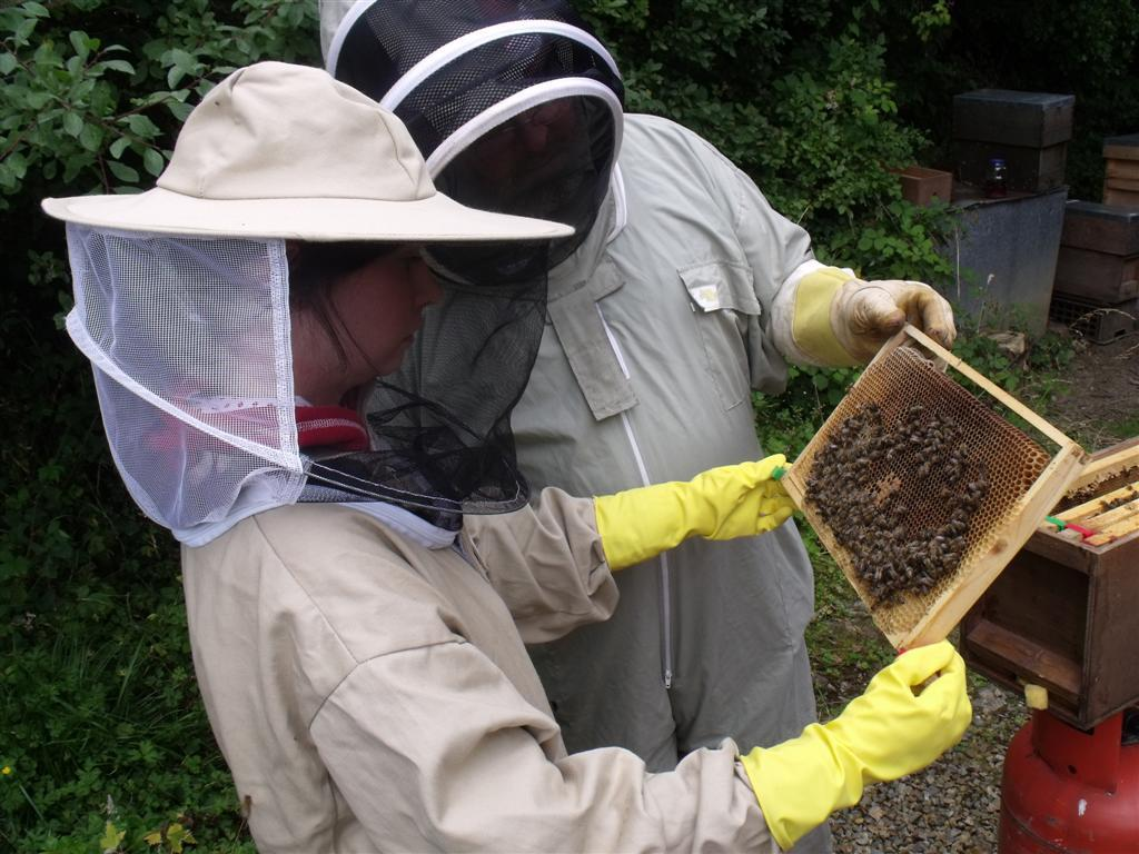 Pembrokeshire Beekeepers Association has a strong membership.