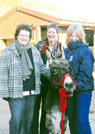 Rural Affairs Minister Elin Jones, Chief Veterinary Officer for Wales Dr Christianne Glossop and Lizzie Ellis from the Donkey Sanctuary
