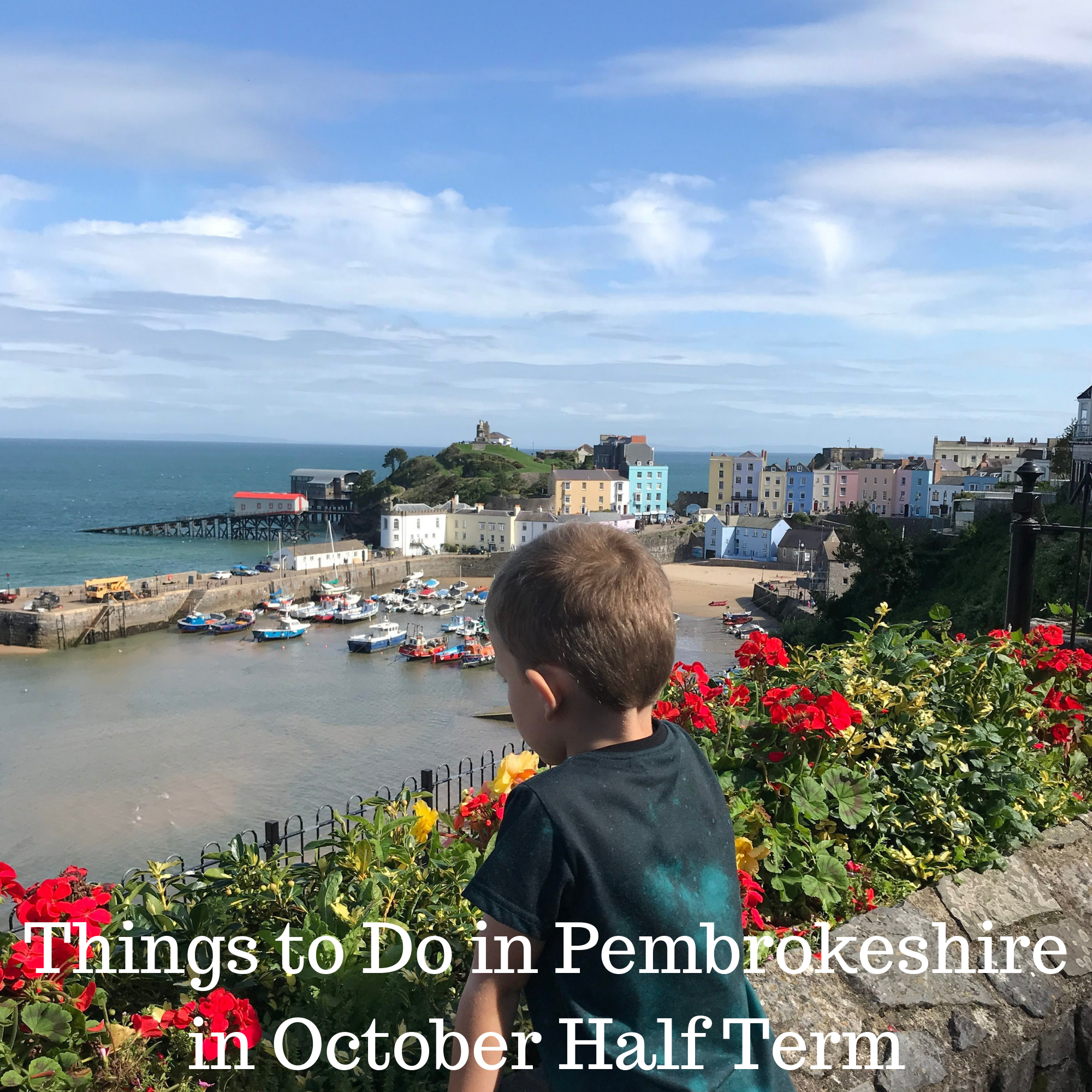What's on in Pembrokeshire for October Half Term