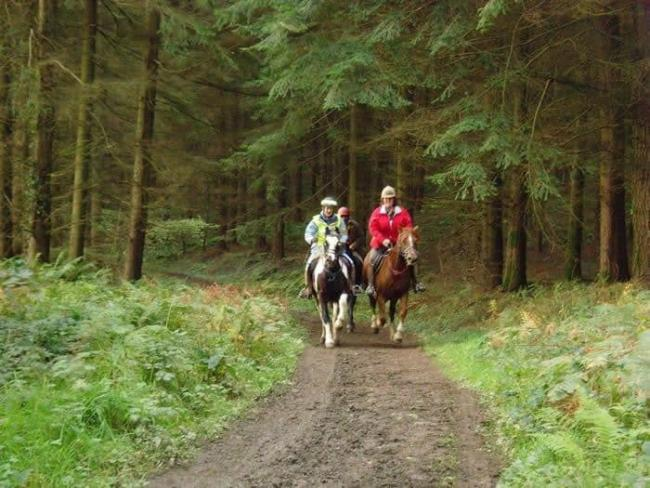 Concerns have been raised about resurfacing on the bridleway from Eagles Lodge to Blackpool Mill. PICTURE: Stock picture.
